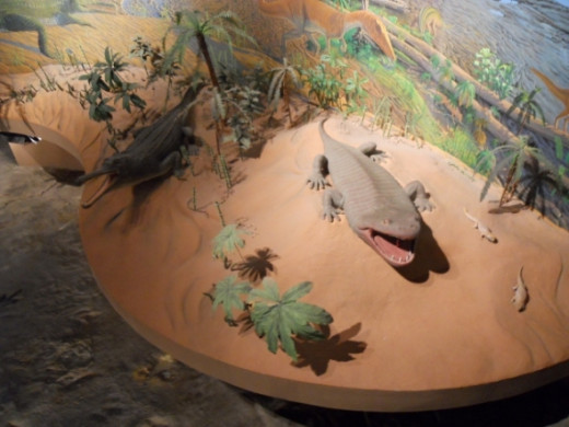 The diorama surrounding the tracks has life size models of prehistoric crocodilians.