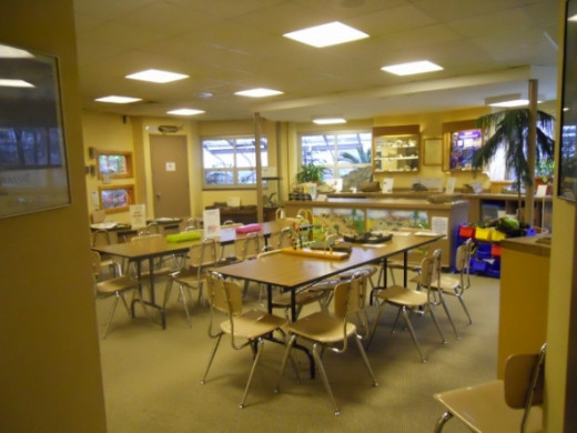 This is the classroom where they conduct arts an crafts projects.    Look at their website to find the schedule for presentations and crafts.