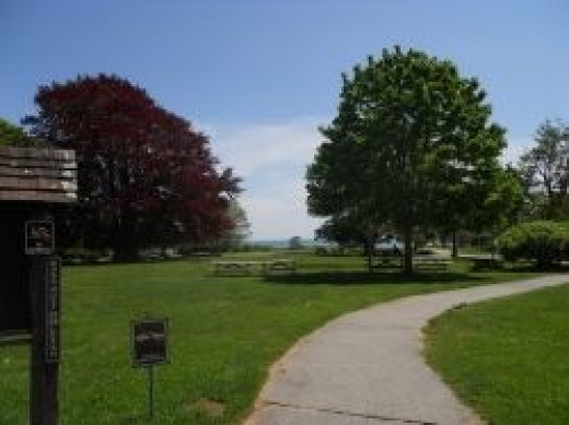 Harkness-Park-Picnic-tables