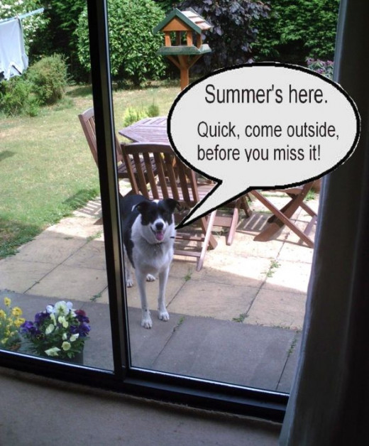 British summer is short