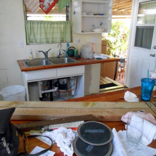 Kitchen deconstruction. What a mess!