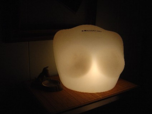 Vintage Lighted Bra Display Lamp