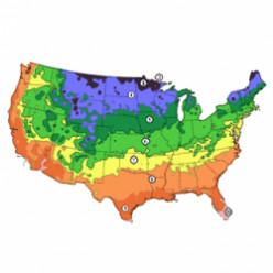 USDA Zone 5 Gardening