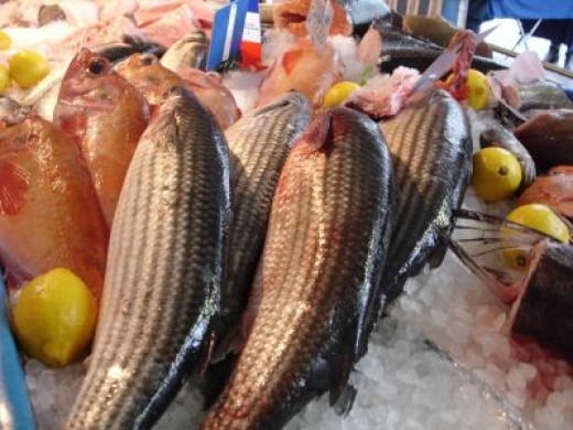 Fish at Fontainebleau's Market