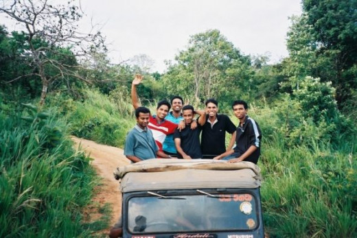 Jeep Safari in Habarana