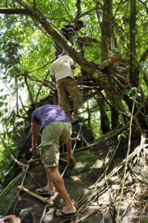 Specail huts at Wijeya resort build for bird watching
