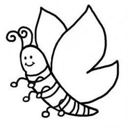 How to draw a butterfly step by step for kids