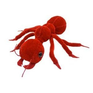 Stuffed Giant Red Ant
