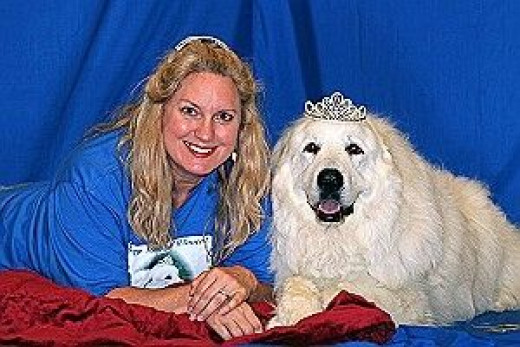 Dallas/Fort Worth Coordinator for TGPR and Great Pyrenees dog
