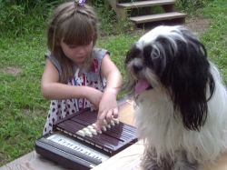 Outdoor-concert-with-Teddy-Shih-Tsu-2003copyright-Vikk-Simmons