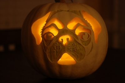 Pug Punkn' photo by foxrosser-white pumpkin carved to look like a pug