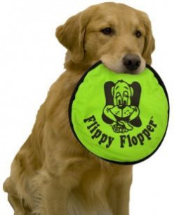 The Flippy Flopper is a great toy for dogs