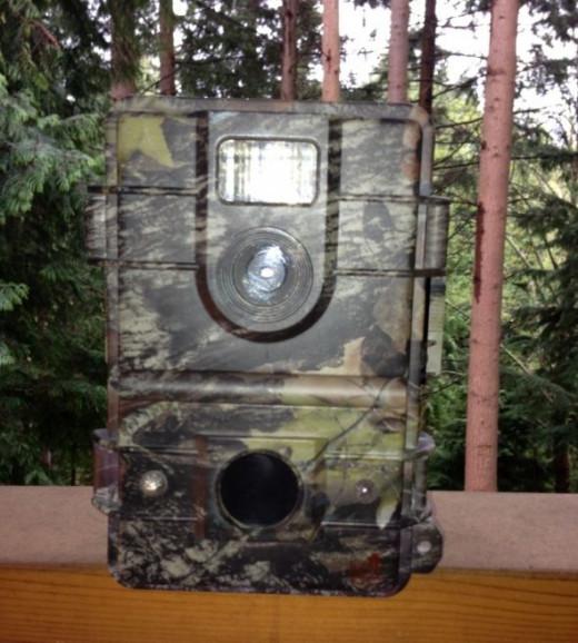 Leaf-River-Game-Camera