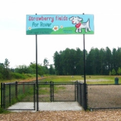 Strawberry Fields Dog Park Snohomish County Washington