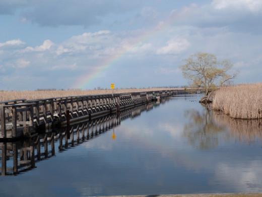Rainbow and Marsh Boardwalk