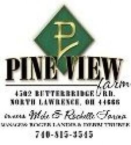Pine View Logo