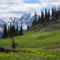 What to See in Glacier National Park - Our Experience