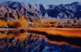 Pangong Lake of Leh Ladakh