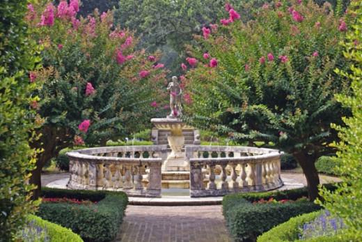 A beautifully tailored English garden.