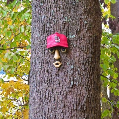 Cardinal Face on Tree