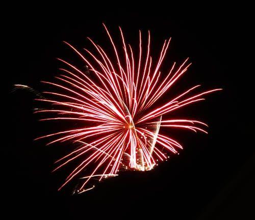 http://www.zazzle.com/mbgphoto