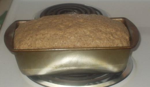Step 6: Let  dough rise until double in bulk