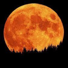 Full Moon Rising by Night Sky Info