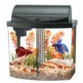 Best Fish Tank Aquariums for Home 2015