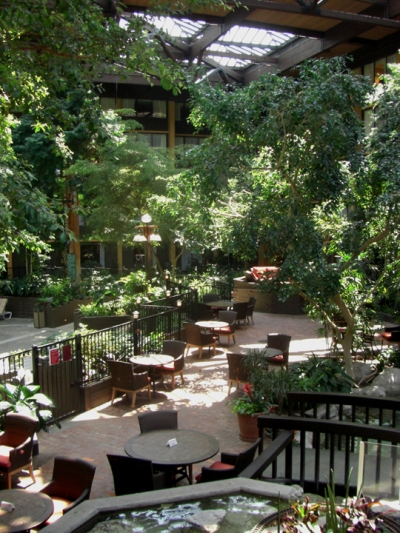 Our hotel, the Seattle Airport Marriott is gorgeous!