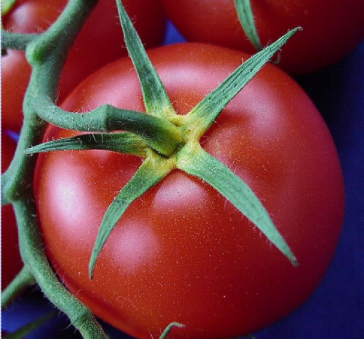 Choose local produce for the freshest flavor