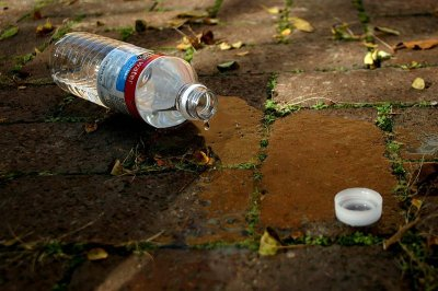 Tossed to the Curb: Water Bottle Waste Picture by Dsw4