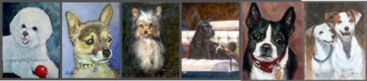different small breeds of dogs