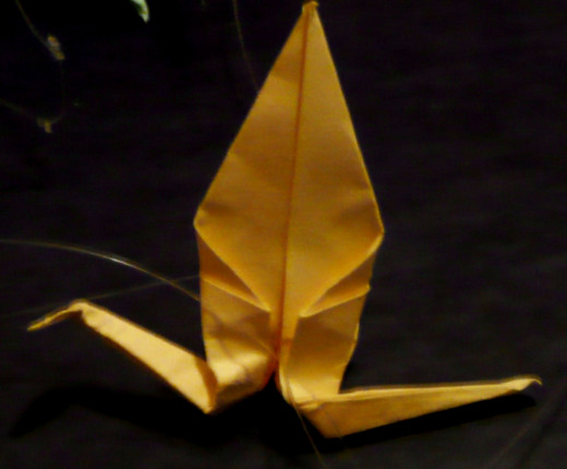 One of the first of now several hundred paper cranes of mine. They continue to always get better!