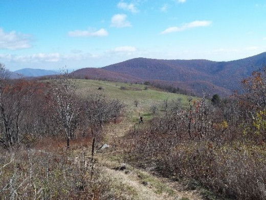 Hiking Cold Mountain, Virginia