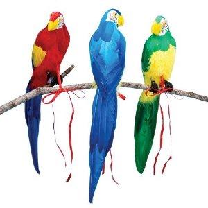 """20"""" Parrot Asst."""