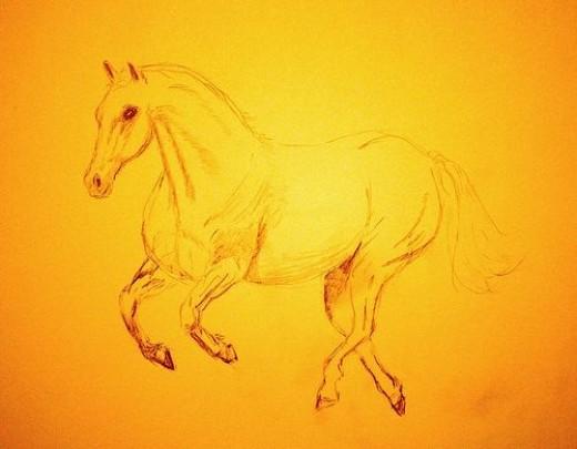 Quarter Horse sketch by Linda Hoxie