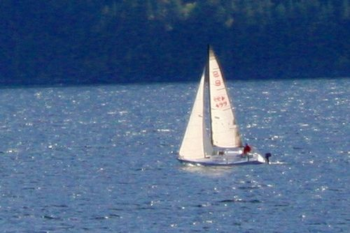 A sailboat crossing the Kootenay