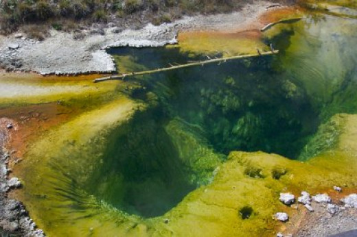 Hot spring pool in Yellowstone