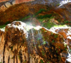 Weeping Rock Trail-Zion National Park
