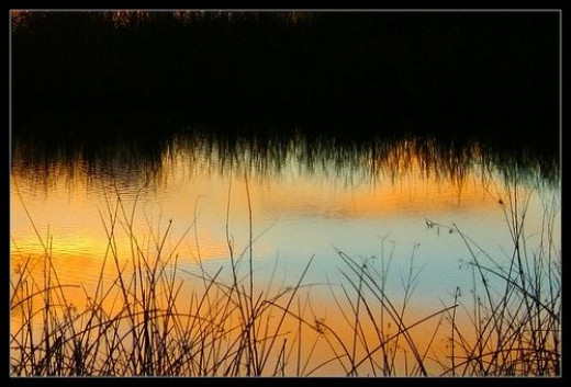 Reflections of a days end