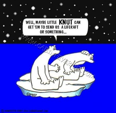 Knut Cartoon by David M. Booth