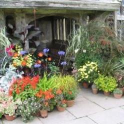 Great Dixter - a great garden