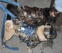 Organic Armor -- the best pet armor crafter out there!