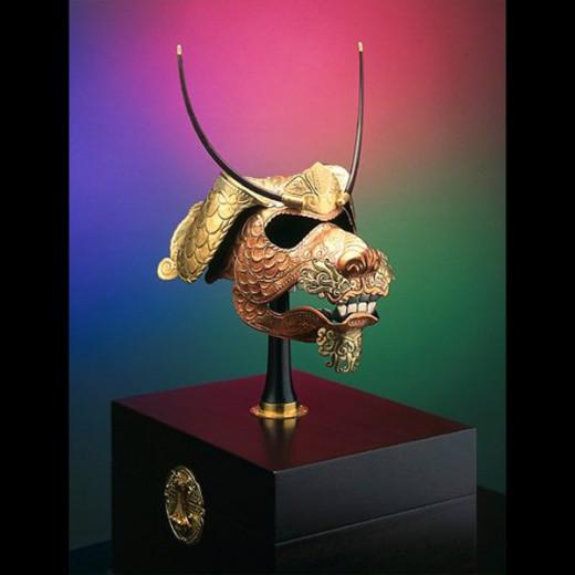 DeBoer's helmet for a Rottweiler.