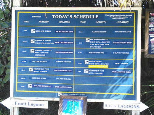 As you round the curve toward the first, Front Lagoon, you'll see the schedule of that day's programs and where to find them.