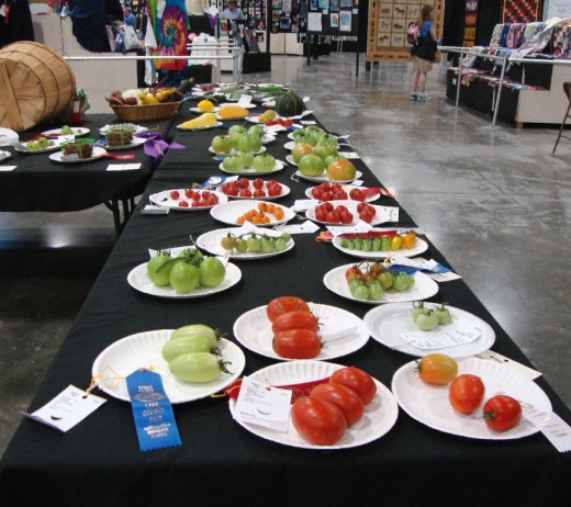 The produce winners in tomatoes.