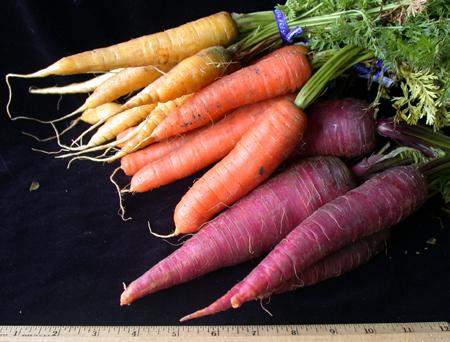 Heritage carrots, mixed varieties