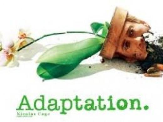 adaptation nicolas cage
