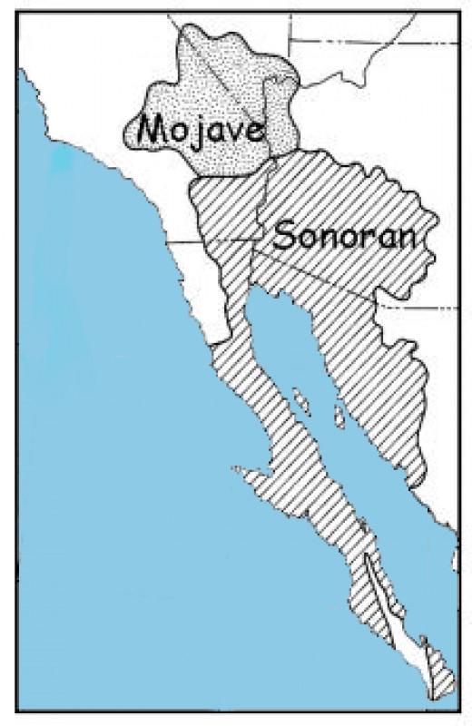 Mojave Sonoran Desert Map