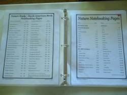 Table of Contents Notebook Pages